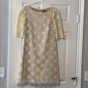 Off white Lace Sleeved Dress (Size 4)